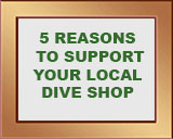 5 reasons to support your local dive shop